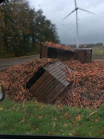 'Leuk die bestuurbare wortelwagens'